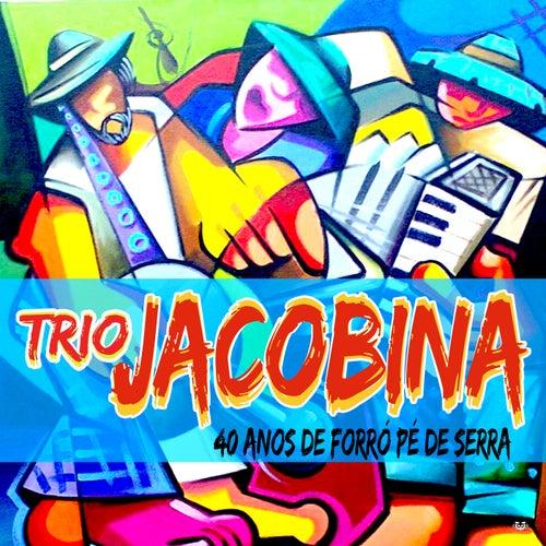 40 Anos De Forró Pé De Serra by Trio Jacobina