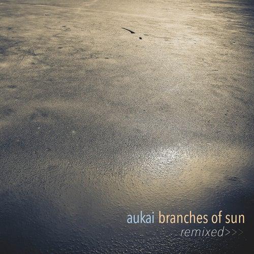 Branches of Sun Remixed von Aukai