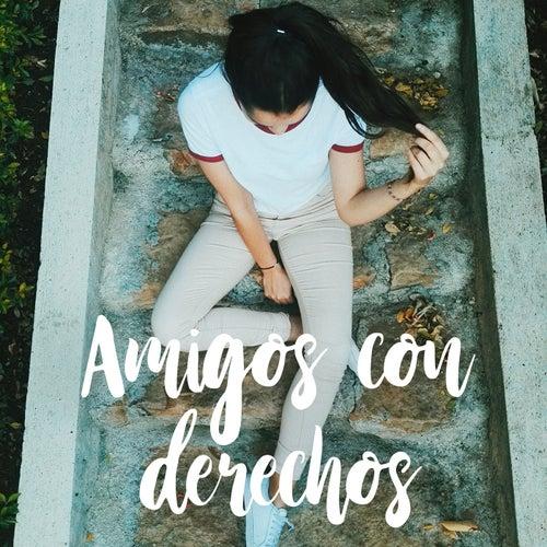 Amigos con derechos by Laura Naranjo