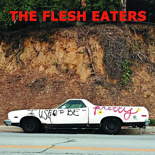 I Used to Be Pretty by The Flesh Eaters