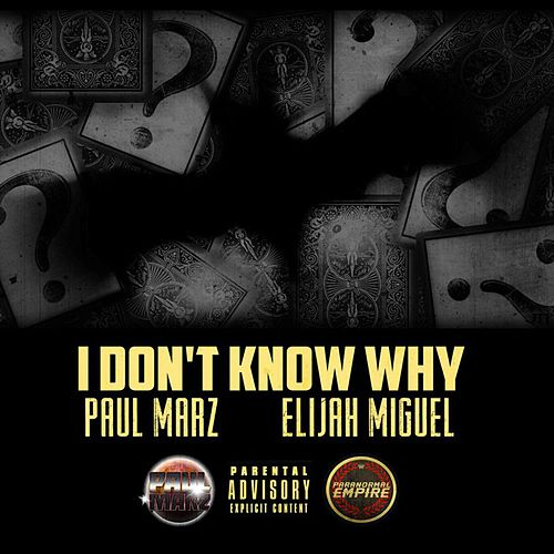 I Don't Know Why by Paul Marz