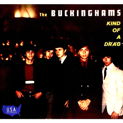 Kind of a Drag von The Buckinghams