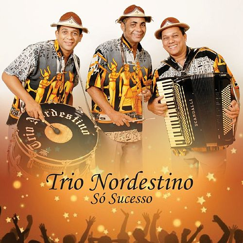 Só Sucesso von Trio Nordestino