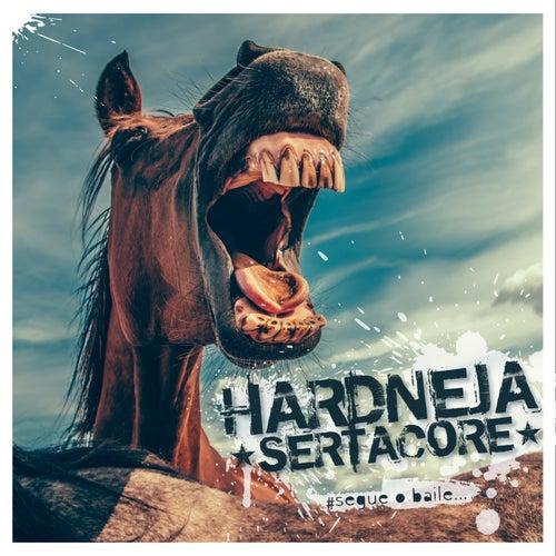 Segue o Baile... von Hardneja Sertacore