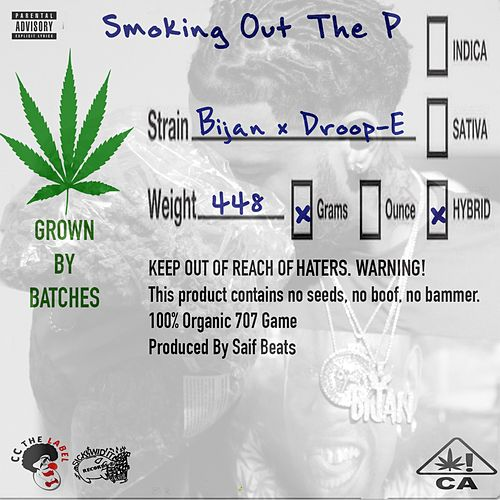 Smoking Out the P (feat. Droop-E) von Bijan