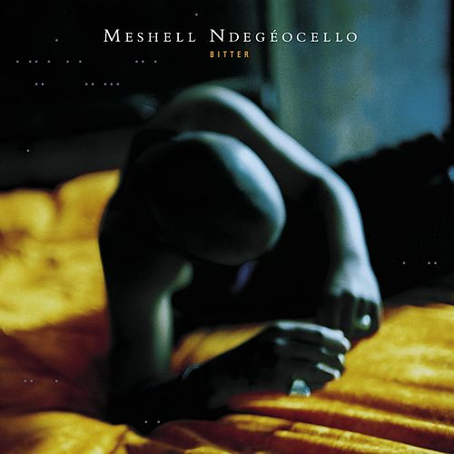Bitter von Meshell Ndegeocello