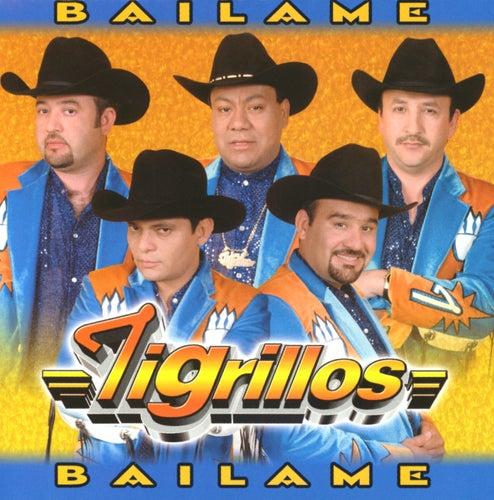 Báilame von Los Tigrillos