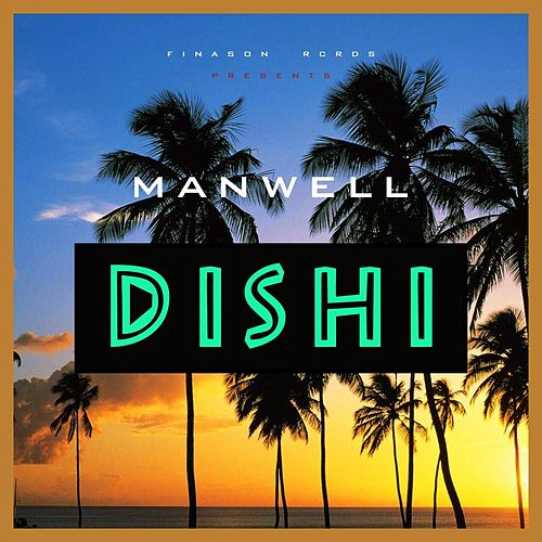 Dishi by Manwell