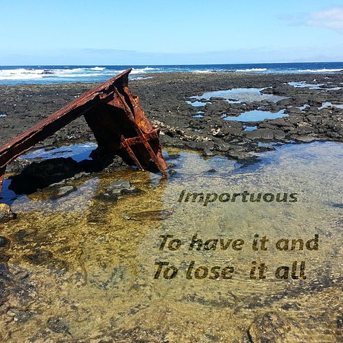 To Have It and to Lose It All by Importuous
