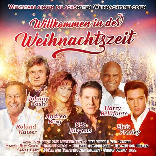 Willkommen in der Weihnachtszeit von Various Artists