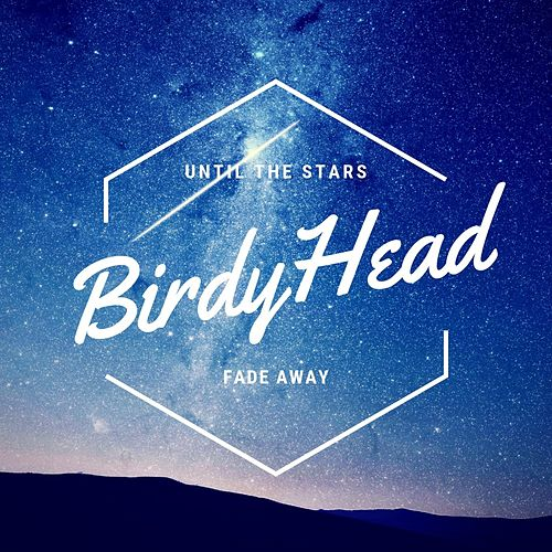 Until the Stars Fade Away by BirdyHead
