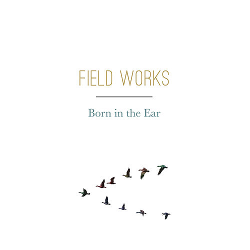 Born in the Ear by Field Works
