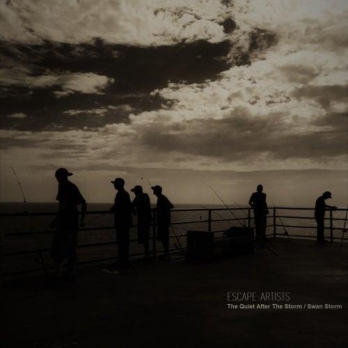 The Quiet After the Storm / Swan Storm von Escape Artists