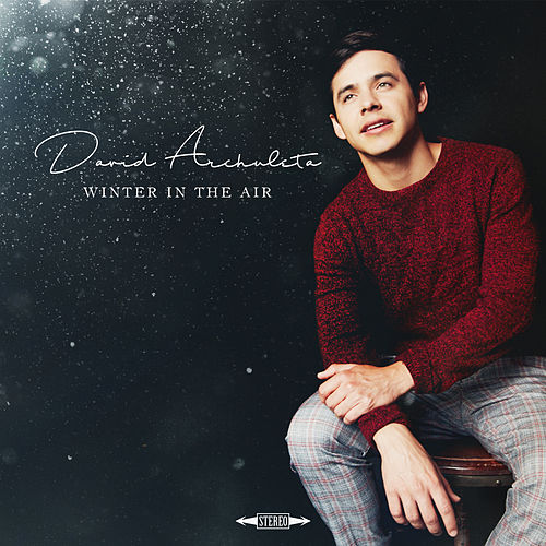 Winter in the Air de David Archuleta