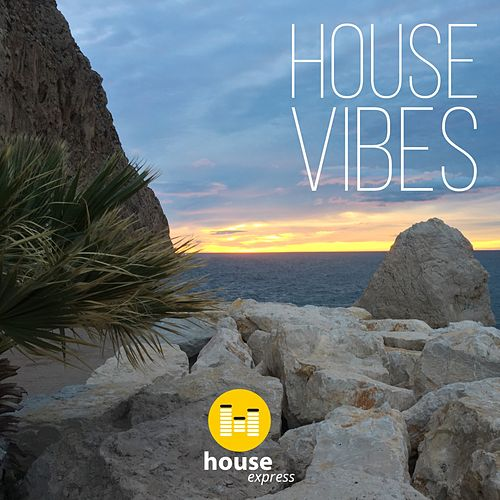 House Vibes von Various Artists