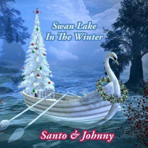 Swan Lake In The Winter di Santo and Johnny