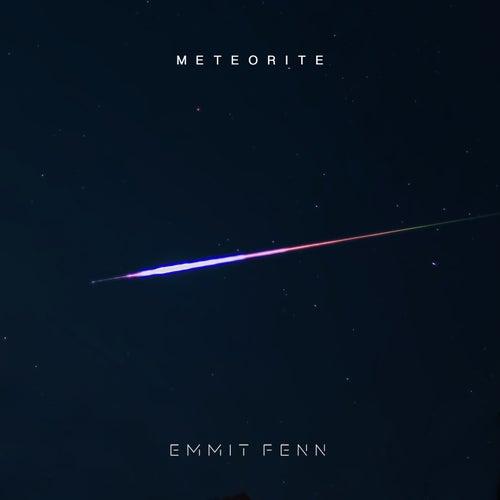 Meteorite von Emmit Fenn