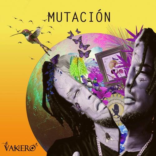 Mutacion de Vakero