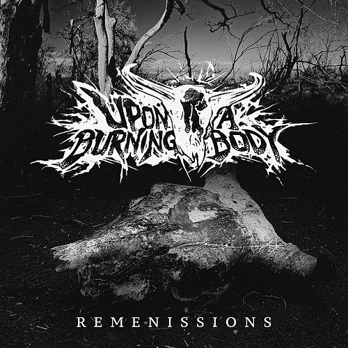 Remenissions by Upon A Burning Body