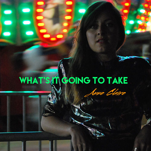 What's It Going to Take by Anne Claire