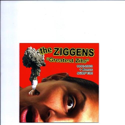 Greatest Zits 1990-2003 + Bonus Surf CD de The Ziggens