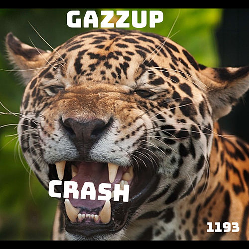 Crash de Gazzup