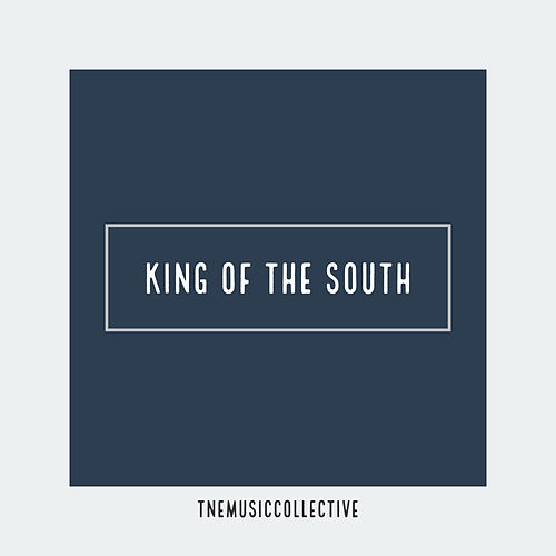 King of the South (Instrumental) de Trial and Error