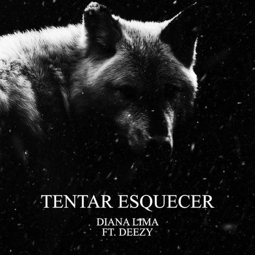Tentar Esquecer by Diana Lima
