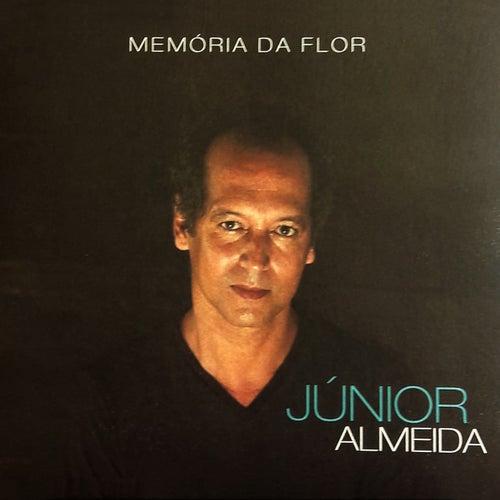 Memória da Flor de Júnior Almeida
