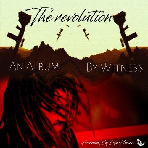 The Revolution de Witness