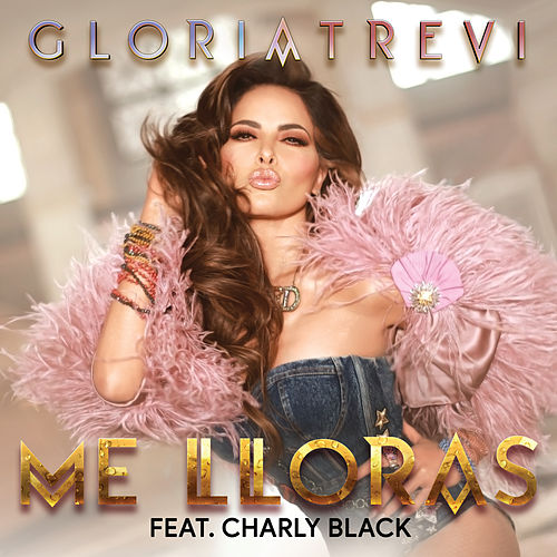 Me Lloras by Gloria Trevi