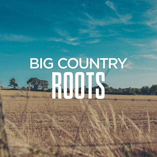 Big Country Roots by Various Artists
