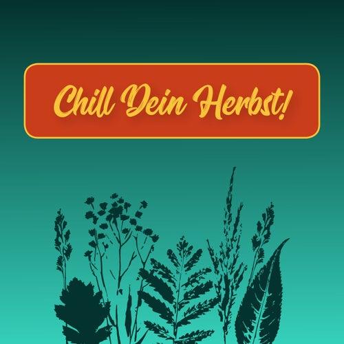 Chill dein Herbst! de Various Artists