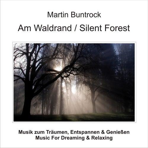 Am Waldrand / Silent Forest von Martin Buntrock