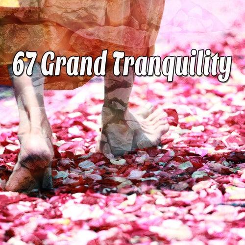 67 Grand Tranquility de Meditación Música Ambiente
