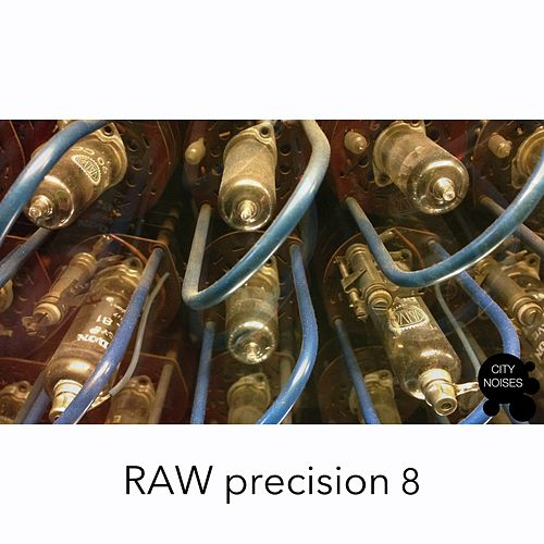 Raw Precision 8 von Various Artists