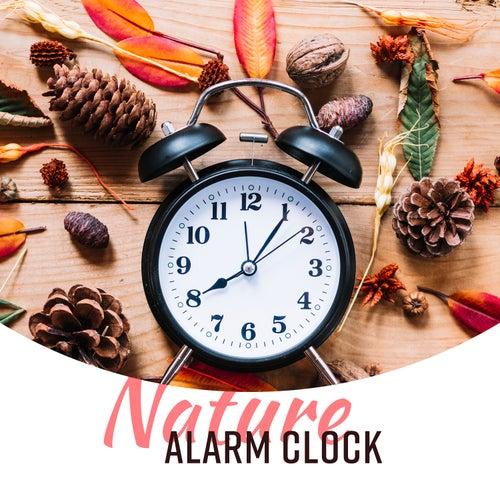 Nature Alarm Clock: Wake Up Sounds, Gentle Awakening    by