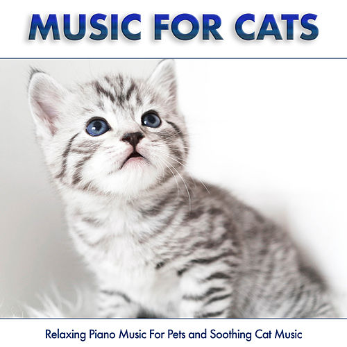 Kitten Mittens By Music For Pets Napster The three little kittens found their mittens, and they began to cry, oh, mother dear, see here, see here! napster