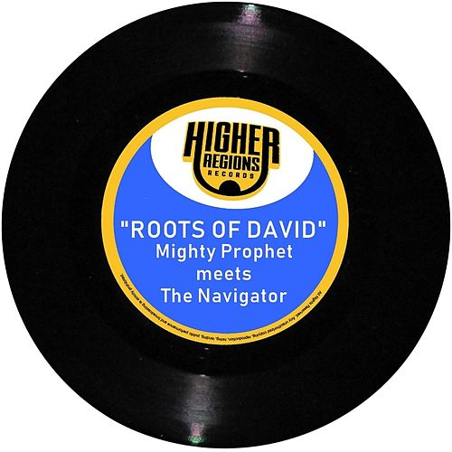 Roots of David by Mighty Prophet