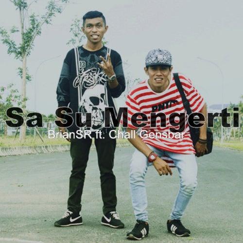 Sa Su Mengerti by BrianSR