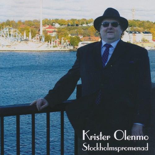 Stockholmspromenad von Krister Olenmo