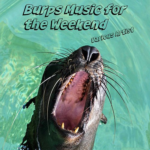 Burps Music for the Weekend de Various Artists