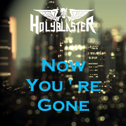 Now You're Gone von Holyblaster