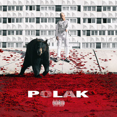 Polak by PLK