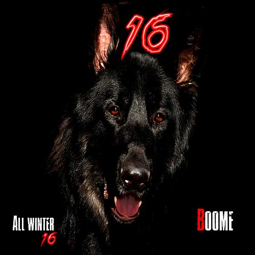All Winter 16 by Boome