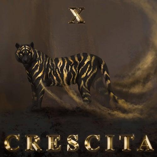 Crescita by X