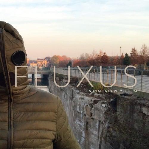 Non si sa dove mettersi von Fluxus