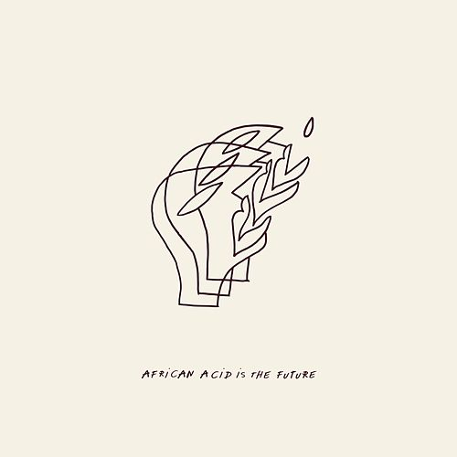 African Acid Is the Future by Various Artists