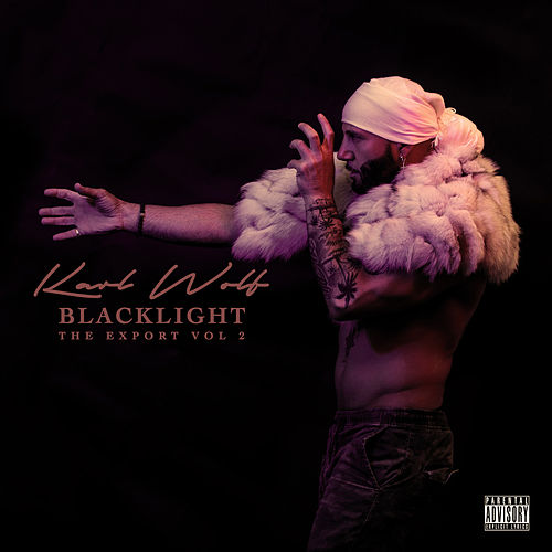 Blacklight (The Export, Vol. 2) by Karl Wolf
