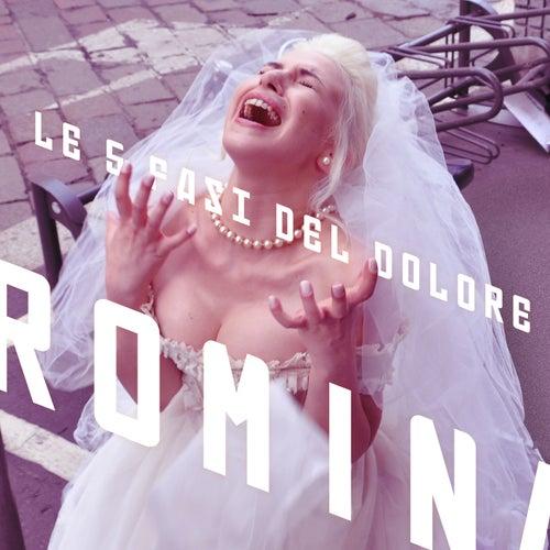 Le 5 Fasi del Dolore by Romina Falconi